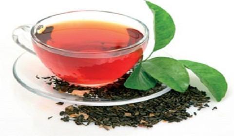 Yaş çay alım fiyatları belli oldu: 3,03 lira