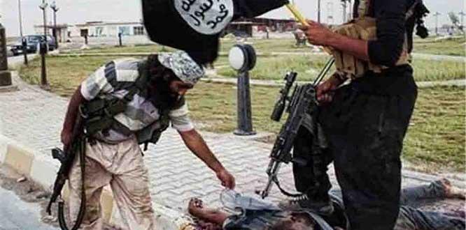 Terör Örgütü IŞİD Yuvalarında Avrupa ve ABD Yapımı Silahlar Bulundu