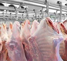 Laboratuvarda Üretilen Yapay Etler Yiyecek Sektöründe Kullanılacak
